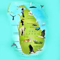 わくわくスリランカ情報のイメージ